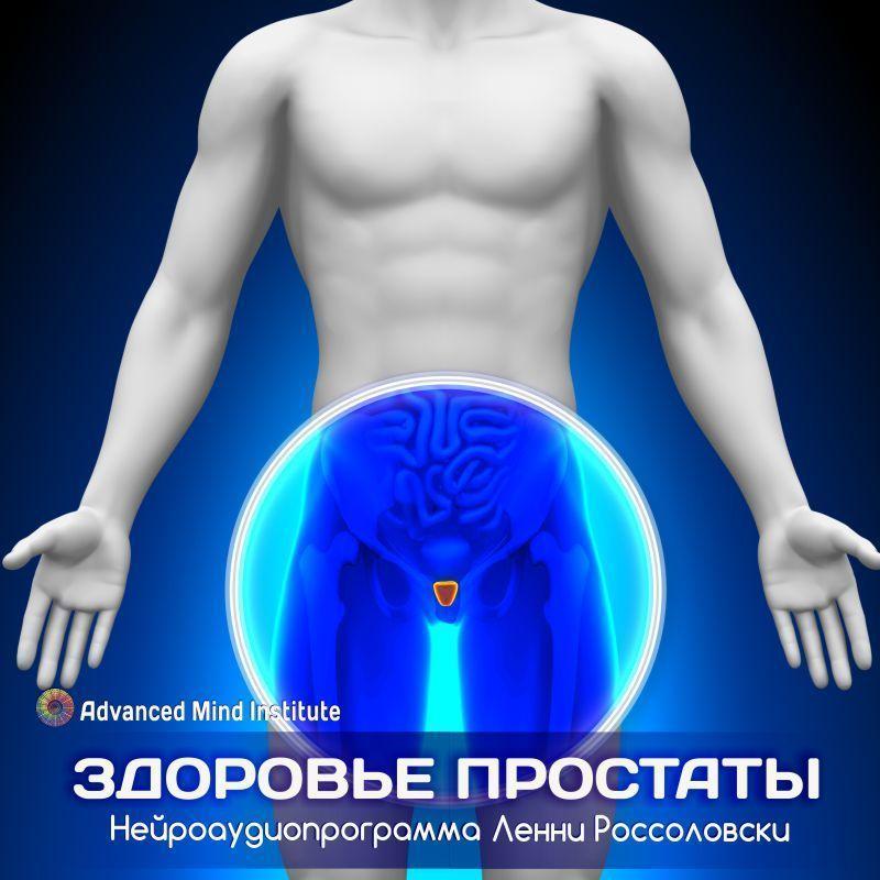 Здоровье простаты ленни россоловский скачать